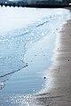 Biwa Lake (10490738904).jpg