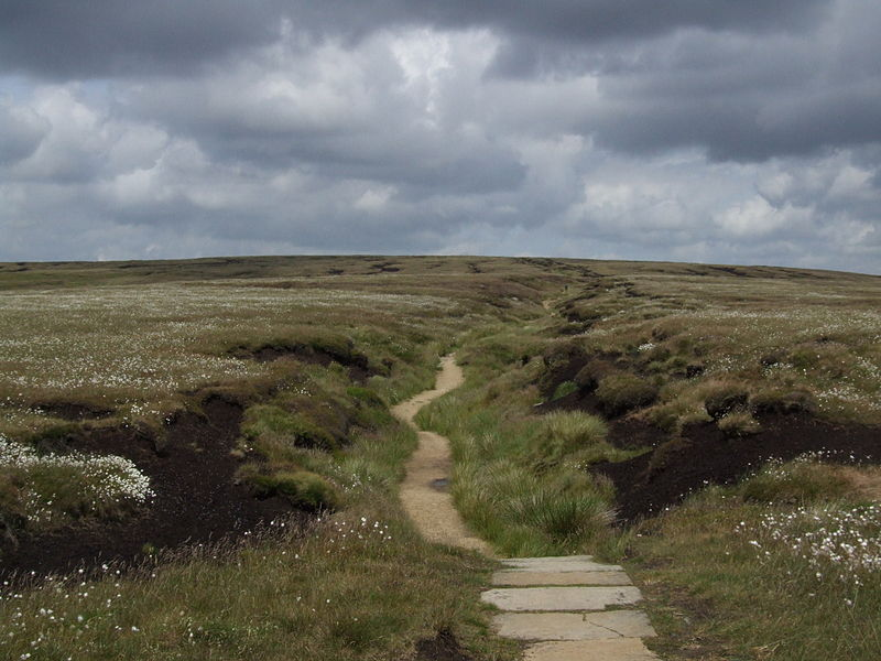 File:Bleaklow6292.JPG
