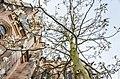 Blooming tree near Elisabethkirche (Marburg, 2015) - panoramio.jpg