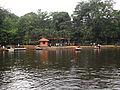 Boatjetty in Pookode Lake.JPG