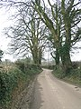 Bodden Lane - geograph.org.uk - 341189.jpg