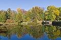 Botanischer Garten Berlin-Dahlem 10-2014 photo04 pond.jpg