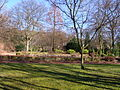 Botanischergarten Duisburg.JPG