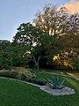 Botaniska trädgården Visby.jpg