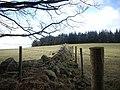 Boundary wall - geograph.org.uk - 1180867.jpg