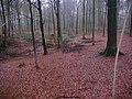 Braine-le-Comte, Belgium - panoramio (5).jpg