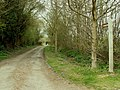 Bridleway and track to Oak Hall - geograph.org.uk - 399977.jpg