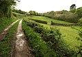 Bridleway near Tomperrow - geograph.org.uk - 1289166.jpg