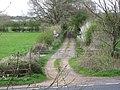 Bridleway towards River Stour - geograph.org.uk - 1252212.jpg