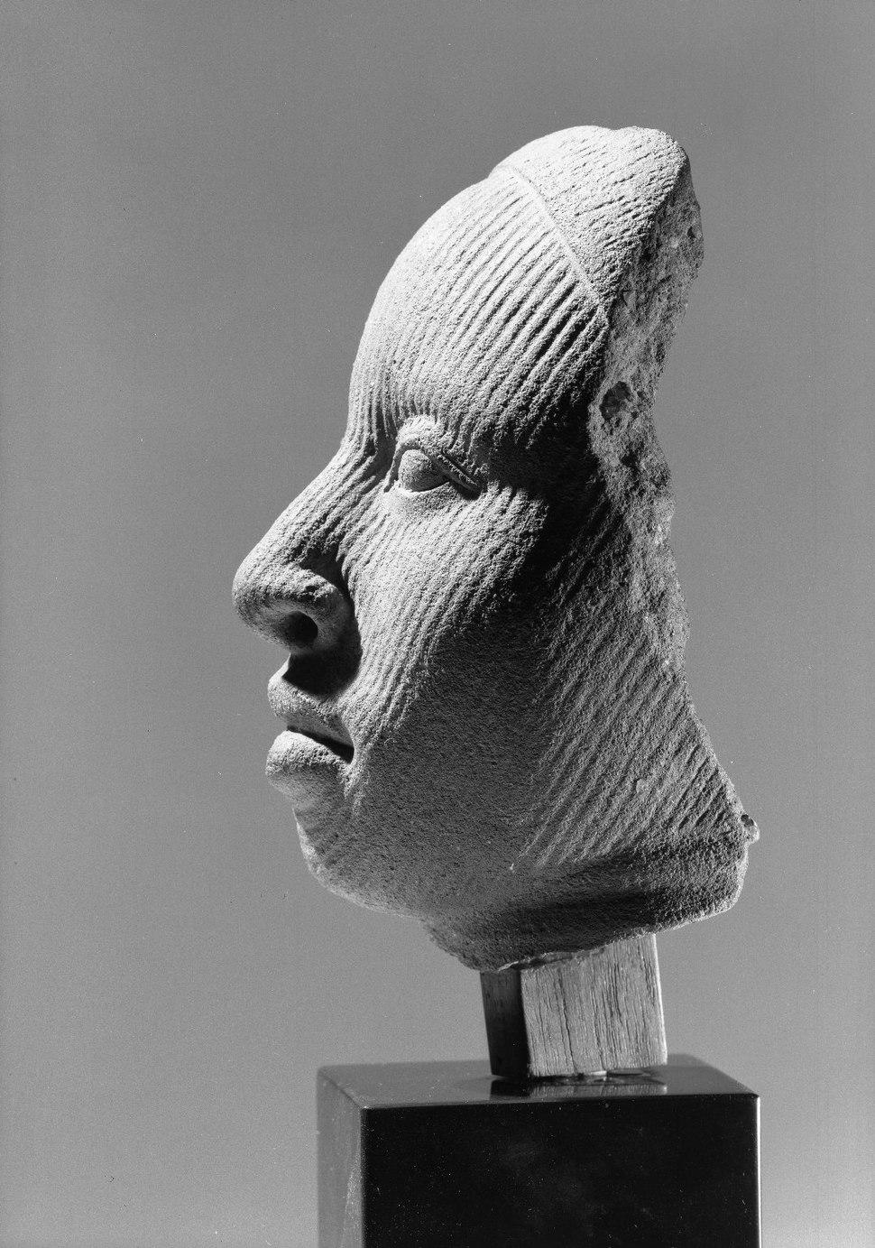Brooklyn Museum L54.5 Fragment of a Head (3)
