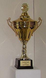 2003–04 Bulgarian Cup football tournament season