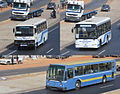 Bus Dakar.jpg
