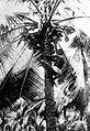 COLLECTIE TROPENMUSEUM Een jongen klimt in een kokospalm om kokosnoten te plukken TMnr 10012480.jpg
