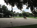 Cabrini Park Chairs Dogs.JPG
