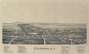 Village of Caledonia, New York in 1892