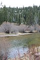 California State Route 89 - panoramio (7).jpg