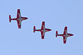 Canadian Snowbirds 2 (7917629742).jpg