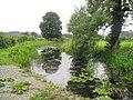 Canal at Garthmyl - geograph.org.uk - 1474050.jpg