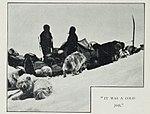 Cape-Adare-1899-Carsten-Borchgrevink-Camp-Ridley-Dogs2.jpg