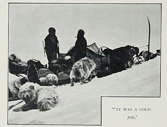 Southern Cross Expedition - Dogs of the Southern Cross Expedition
