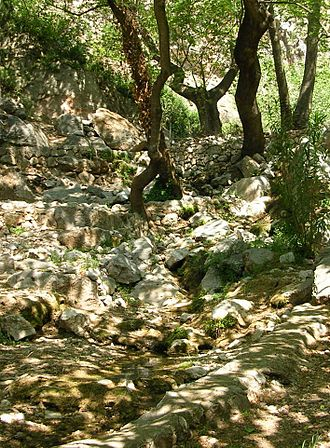 International Delphic Council - Castalian Spring at the foot of the mountain Mount Parnassus in Delphi. In ancient times, this spring was to Apollon and Muse dedicated