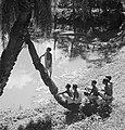 Cecil Beaton Photographs- General IB1863.jpg