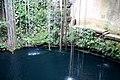 Cenote (3489492887).jpg