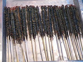 Centipede - Centipedes at Wangfujing market