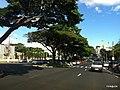 Centro, Franca - São Paulo, Brasil - panoramio (298).jpg