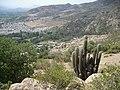 Cerro San Juan. - panoramio - R.A.T.P. (17).jpg