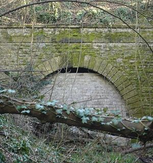 Hatch Beauchamp - The Chard Branch Line as it was in 2010, entering the now sealed tunnel immediately prior to the Hatch Beauchamp station.