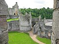Chepstow Castle - geograph.org.uk - 28210.jpg