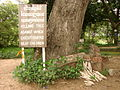 Cheung Ek - Killing Fields Site - Cambodia - 02.JPG