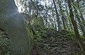 Ciężkowice, Poland - panoramio (44).jpg