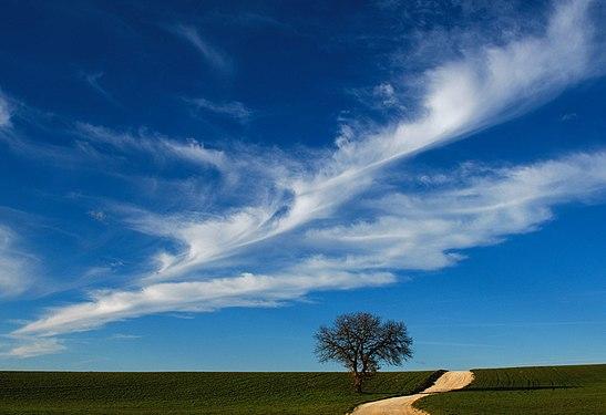 Cielo blu con scia nuvolosa a San Magno .jpg