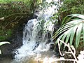 Cipete, Cilongok, Banyumas Regency, Central Java, Indonesia - panoramio (4).jpg