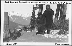 "The Call of the Wild (1935 film) - Image: Clark Gable and Jack Oakie As They Sight The ""Wolves"" in ""The Call of The Wild"", Mount Baker National Forest, 1935. NARA 299074"