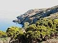 Cliffs above Porth Eilian - geograph.org.uk - 737106.jpg