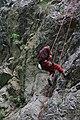 Climbing (4625365500).jpg