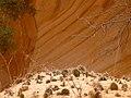 Cohab Canyon , DyeClan.com - panoramio (15).jpg
