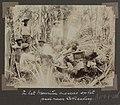 Collectie NMvWereldculturen, RV-A102-1-116, 'In het Mauritia moeras op het pad naar Cotticaberg'. Foto- G.M. Versteeg, 1903-1904.jpg