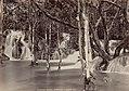 Collectie Nationaal Museum van Wereldculturen TM-60062233 Riviergezicht met watervallen Jamaica fotograaf niet bekend.jpg