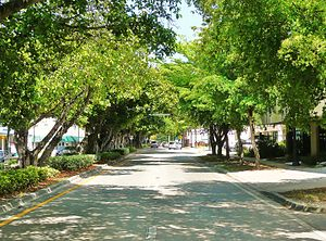 Coral Way - Part of the scenic Coral Way road within the Coral Way neighborhood of Miami.