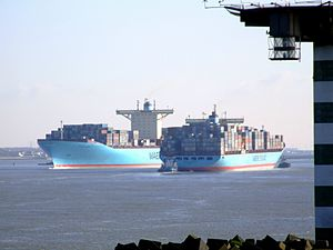Cornelius IMO 9198587 & Eleonora Maersk IMO 9321500 , Port of Rotterdam, Holland 25-Jan-2007.jpg