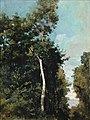 Corot - FOREST ON THE GRACE COAST IN HONFLEUR, R291.jpg