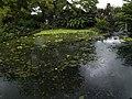 Costa Rica (6109898885).jpg
