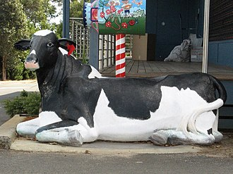 Cowaramup, Western Australia - Cow statue outside the post office
