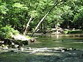 Crabtree Creek Company Mill Trail Umstead NC SP 0046 (3582930729).jpg