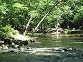 Crabtree Creek Company Mill Trail Umstead NC SP 0046 (3582930729).jpg
