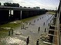 Cruzando el Salado (Puente ferroviario) - panoramio.jpg